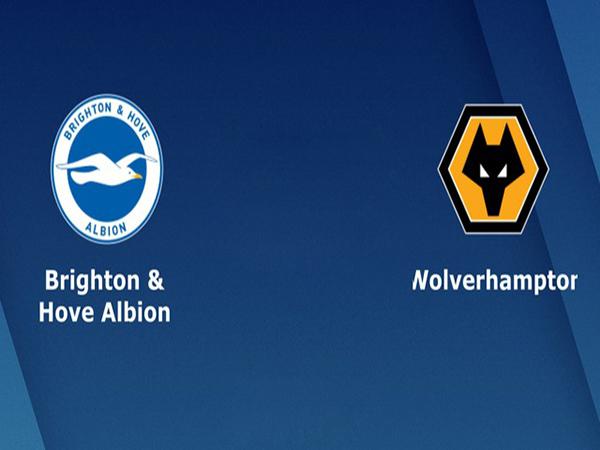 Nhận định Brighton vs Wolves