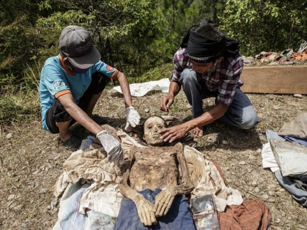 Mơ thấy xác chết đánh con gì, điềm tốt hay xấu?