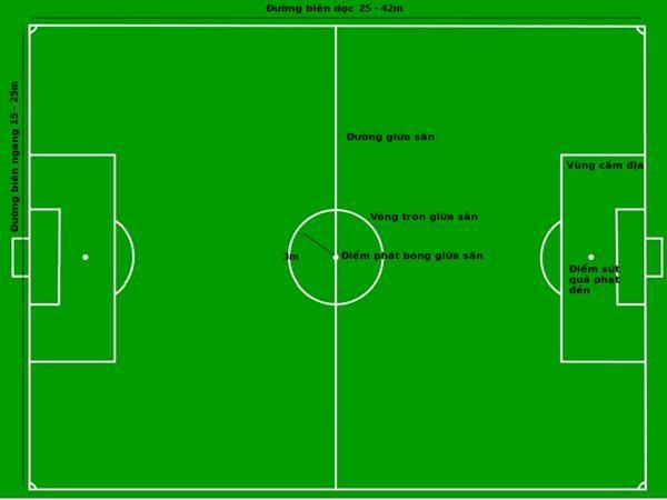Kích thước sân bóng đá 7 người theo tiêu chuẩn của FIFA